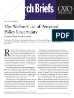 The Welfare Cost of Perceived Policy Uncertainty