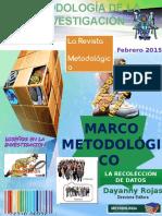 REVISTA DE METODOLOGIA