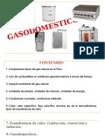 capacitacion CIP gasodomesticos