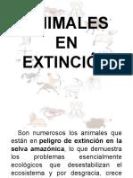 Animales en Extinsión