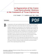 Bone Regeneration of the Craniomaxillofacial and Dento-Alveolar Skeletons in the Framework of Tissue Engineering