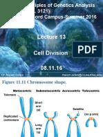 BIOL 3121_Lecture 13_081116 (3)