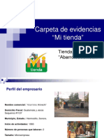 Carpeta de evidencias - Ab. Arivechi.pdf