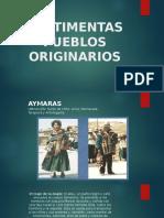 Vestimentas Pueblos Originarios