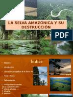 Contaminacion en la selva peruana