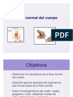 flora_normal.pdf