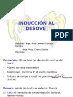 7da_desove_tipos (1)