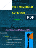 CURS 3 Fracturile mb. sup. II.ppt
