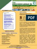 Revista Seguridad y Salud