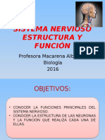 Sistema Nervioso III Medios