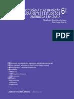 6 Introdução à Classificação Dos Eucariontes