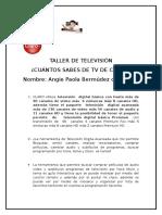 Taller de Televisión Angie Paola Bermudez Canchon