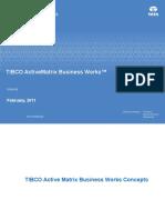 1.4. TIBCO AMX Businesss Works