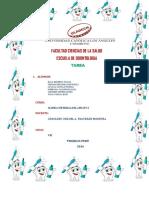 Tarea -02 -Clinica Adulto i. (2)