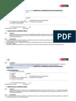 Diseño de La Primera Visita de Asesoria Al Directivo