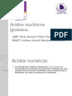Ácidos Nucleicos p