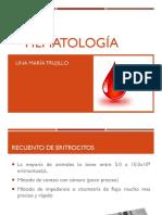3. Interpretación Hematología 1520.pdf
