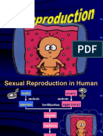 1-human-reproduction.ppt