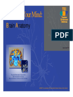 ANATOMY of THE BRAIN Lesson 1A slide show[Compatibility Mode].pdf