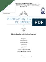Proyecto Integrador de Saberes PIS