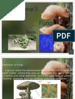Microorganisms Fungi