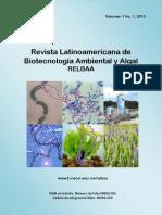 ALGAS PARA ACEITE Y ESPIRULIA PIEL.pdf