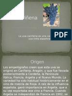 Uva Cariñena.pptx