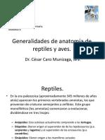 016-2013 Anato de sp exoticas, silves,general.pdf