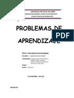 problemas de aprendizaje informe culminado.docx