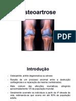 08.Osteoartrose.pdf