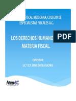 Los Derechos Humanos en Materia Fiscal