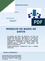 Base de Datos Exposición