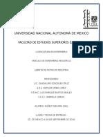 Libreta-de-notas-de-pediatria_Gael (1).docx