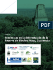 MBR-Deforestation_150213-ES-2 (1).pdf
