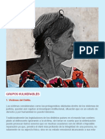 GRUPOS VULNERABLES WEB.pdf
