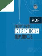 Directivas Ddhh Numero 07 de 2007 (Iia)