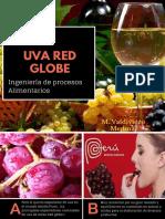 MEDICIÓN DE PH (1).pdf