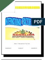 17476528 Sonalika Report on Cis Countries