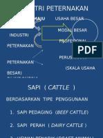 4. INDUSPET-1