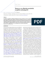Modeling Dietary Influences on Offspring Metabolic Programming in Drosophila Melanogaster