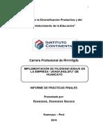 Informe de Prácticas Pre Profesionales 1