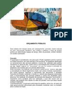 Administração Financeira e Orçamentária AFO I.pdf