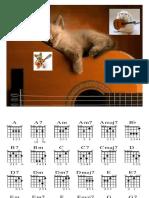 Basic Guitar 2016