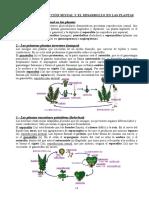12.- La reproducción sexual y el desarrollo en las plantas.doc