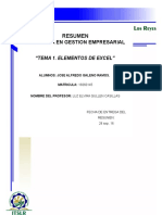 RESUMEN TEMA 1.docx