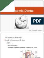 Anatomia Dental.pdf