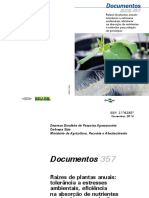 Raízes de plantas anuais tolerância a estresses ambientais, eficiência na absorção de nutrientes e métodos para seleção de genótipos.pdf