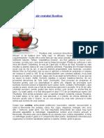 Efectele Benefice Ale Ceaiului Rosu (Rooibos)