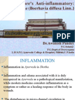 Nature's Anti-inflammatary :Punarnava (B.diffusa Linn.)