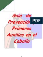 web guía de prevención y primeros auxilios en el caballo